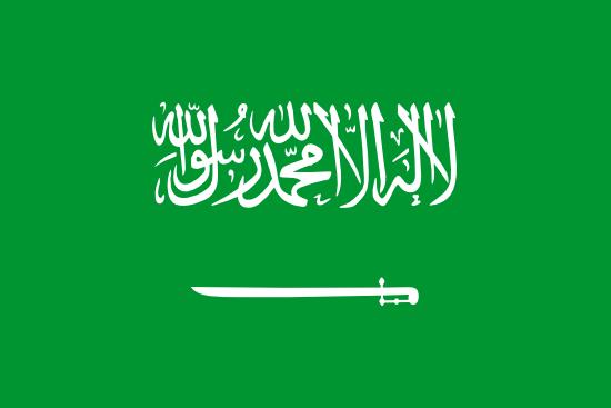Saudi Arabia logo