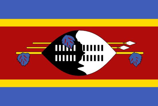 Suazi logo
