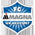 Wiener Neustadt logo