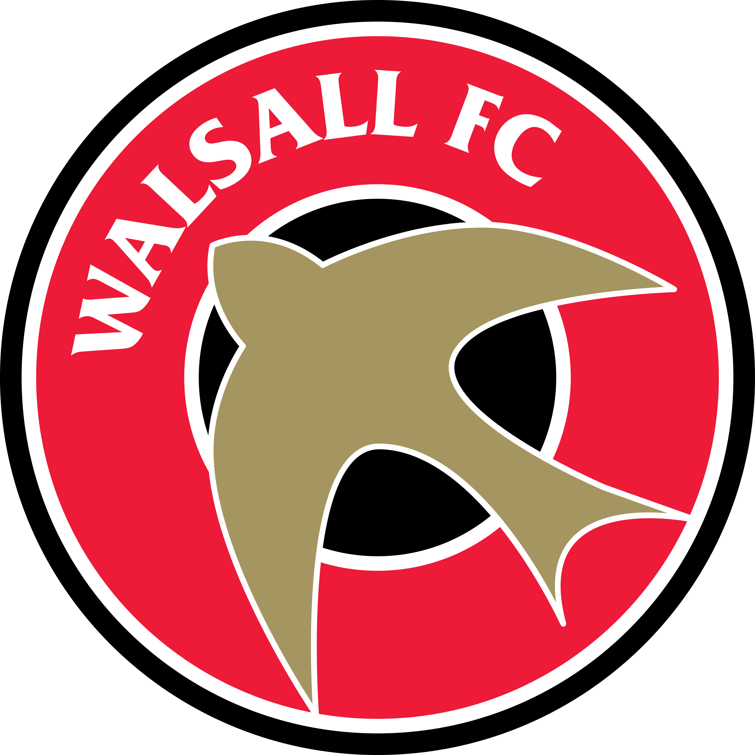 Newport Vs Walsall H2h 24 Nov 2020 Head To Head Stats Prediction