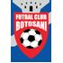 Botosani logo