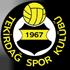 Tekirdagspor logo