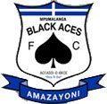 Mpumalanga Black Aces logo