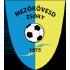Mezokovesd SE logo