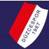 Duzcespor logo