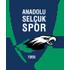 Anadolu Selcukspor logo
