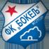 FK Bokelj logo