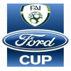 Coppa Irlanda
