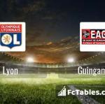 Preview image Lyon - Guingamp