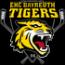 EHC Bayreuth - Die Tigers