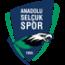 Anadolu Selcukspor