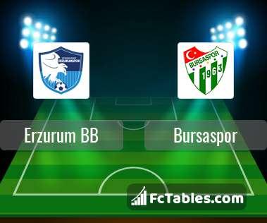 Anteprima della foto Erzurum BB - Bursaspor