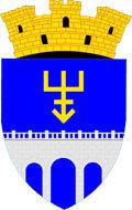 FC Edinet logo