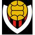 Vikingur Reykjavik logo
