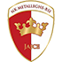 Metalleghe BSI logo