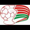 Puchar białorusi